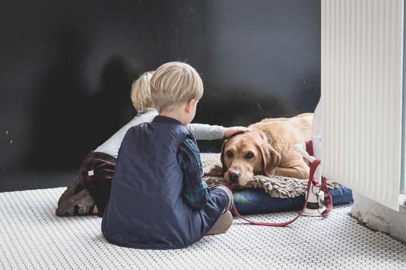 2 boys petting their dog
