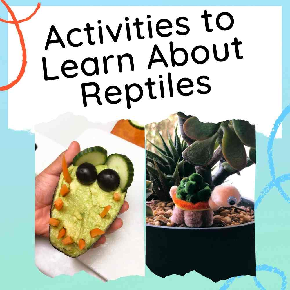 Reptile Activities for Kids - learn all about reptiles with these activities and ideas, including crafts, experiments and a recipe - feature image with text