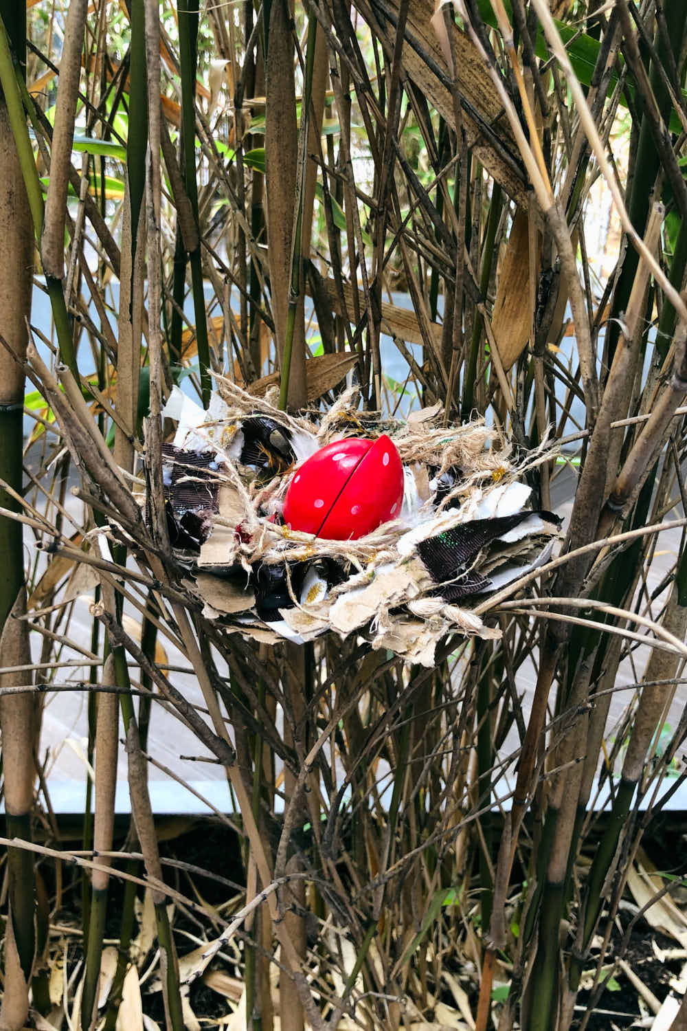 Bird Nest Craft - finished and in tree for display