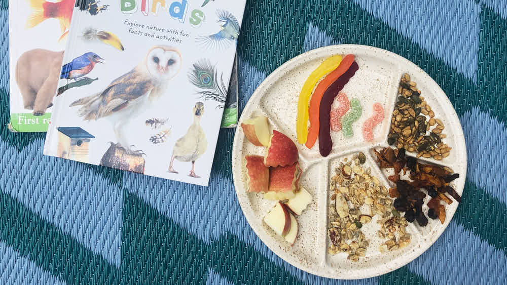 Our pretend eating like a bird picnic - preschool activity to learn about birds
